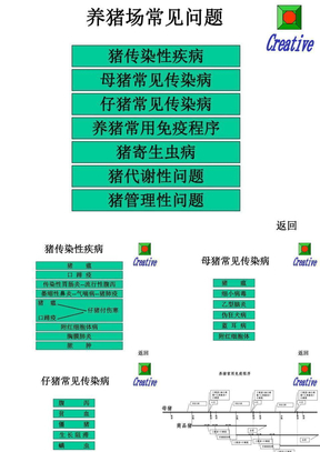 养猪场常见疾病(精点幻灯片).ppt