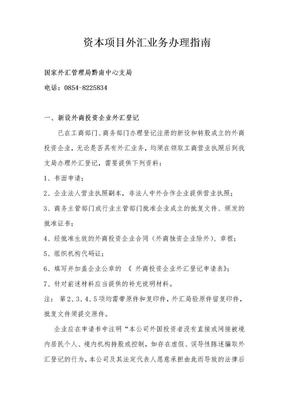 资本项目外汇业务办理指南(政务公开).doc