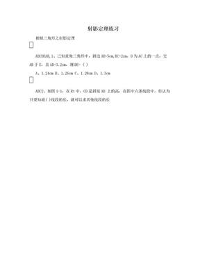 射影定理练习.doc