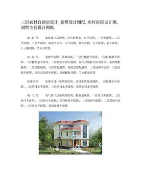 三层复式风格农村自建房设计图纸.doc