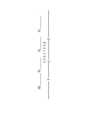 标准试卷模板带密封线模板.doc