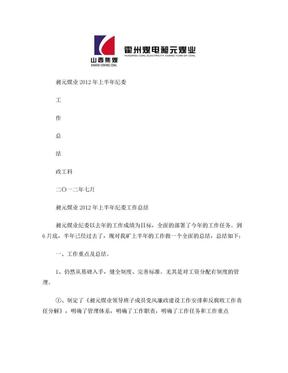 昶元煤业上半年纪委总结.doc
