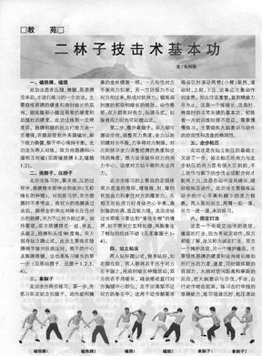 二林子技击术基本功.pdf