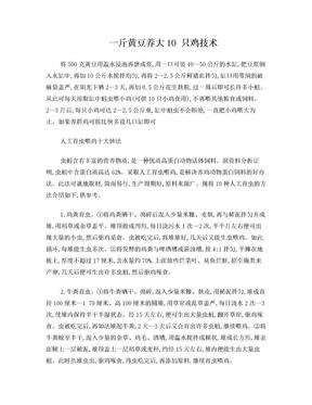 一斤黄豆养大10 只鸡技术.doc