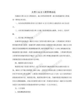 大型土石方工程管理办法.doc