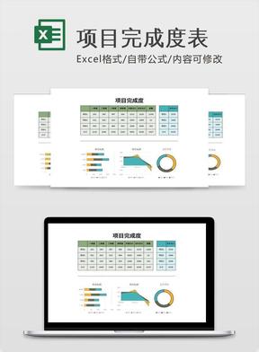 项目完成度表.xlsx