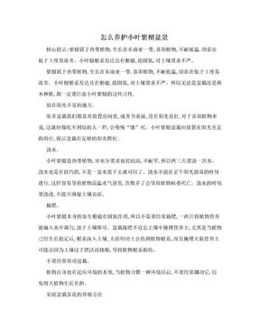 怎么养护小叶紫檀盆景.doc