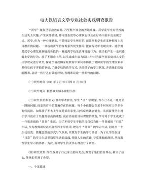 汉语言文学社会实践调查报告.doc