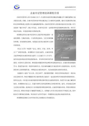 08-企业中层管理人员培训大纲.doc