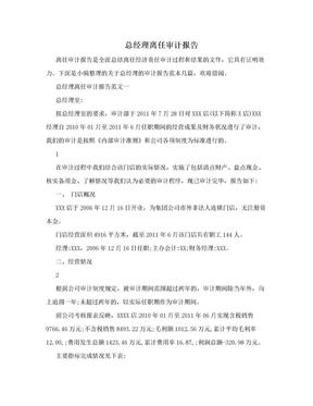 总经理离任审计报告.doc
