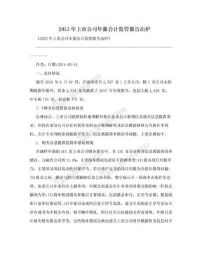 2013年上市公司年报会计监管报告出炉.doc