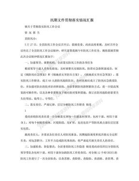 汛期文件贯彻落实情况汇报.doc