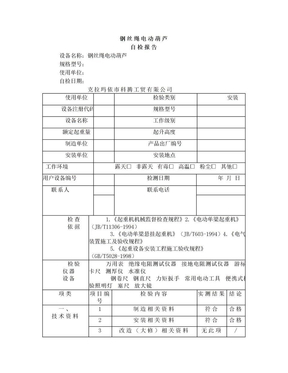 钢丝绳电动葫芦自检报告.doc