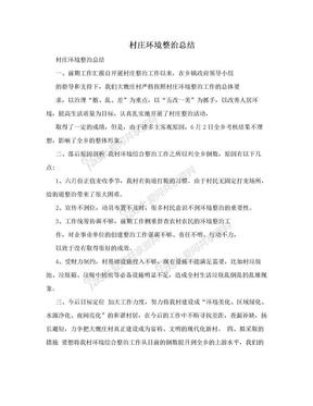 村庄环境整治总结.doc