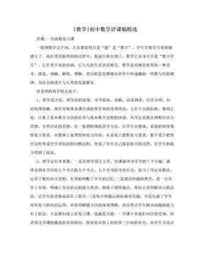 [教学]初中数学评课稿精选.doc