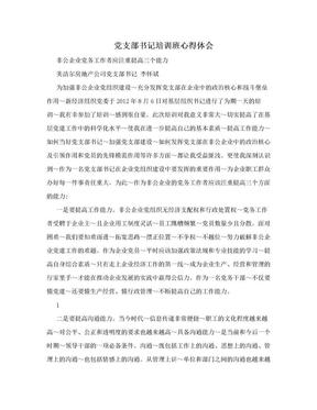 党支部书记培训班心得体会.doc