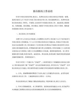 花园宾馆项目防台防汛工作总结1.doc