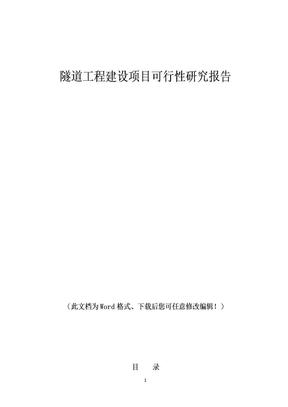 隧道工程建设项目的可行性研究报告.doc