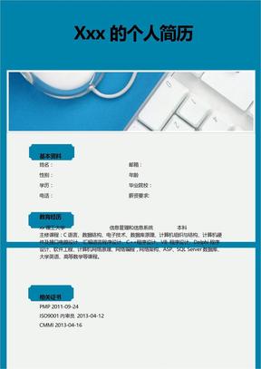 项目工程师优秀简历模板.doc
