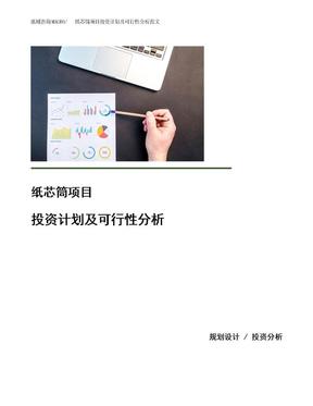 纸芯筒项目投资计划及可行性分析范文.docx