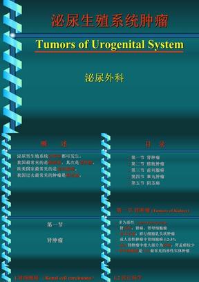 泌尿、男性生殖系统肿瘤.ppt