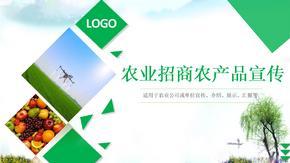 农业招商农产品宣传策划推广展示汇报ppt模板.pptx