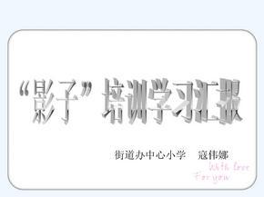 语文人教版五年级下册学习资料.pptx
