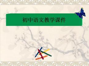 初中语文教学课件.ppt