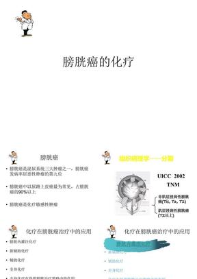 膀胱癌化疗PPT课件.ppt