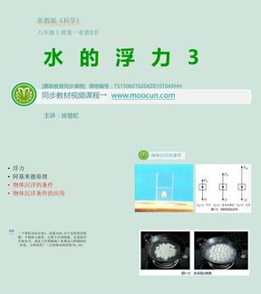 浙教版科学八年级上第一章1.3.3水的浮力-物体沉浮的条件.ppt