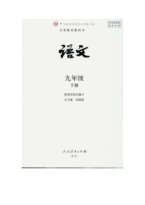 九年级下册  电子课本.pdf