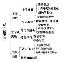 人教版《道德与法治》七年级上册-第1-5课(期中)复习课件 (共38张PPT).ppt