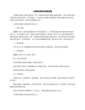 小学防灾减灾日活动总结.docx