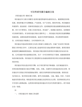 可行性研究报告编制方案.doc