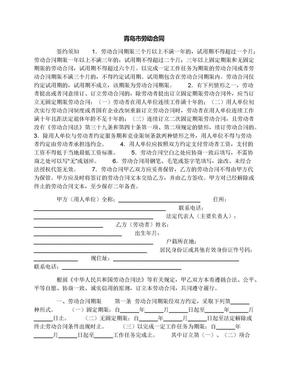青岛市劳动合同.docx