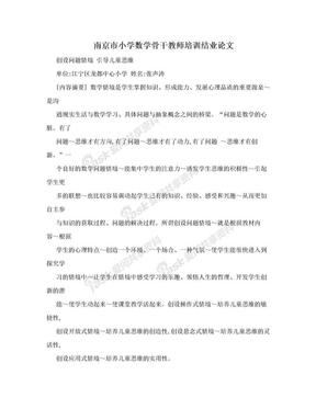 南京市小学数学骨干教师培训结业论文.doc