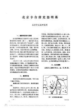 北京丰台唐史思明墓.pdf