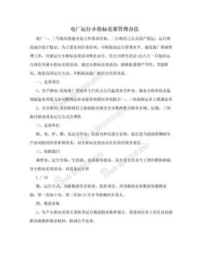 电厂运行小指标竞赛管理办法.doc