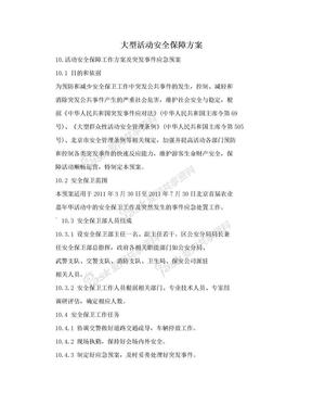 大型活动安全保障方案.doc