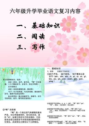 小学六年级语文毕业总复习.ppt