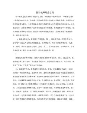 骨干教师培养总结.doc