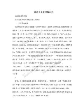 省龙头企业申报材料.doc
