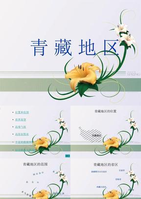 中国地理复习课件:青藏地区.ppt