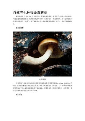 自然界七种致命毒蘑菰.doc
