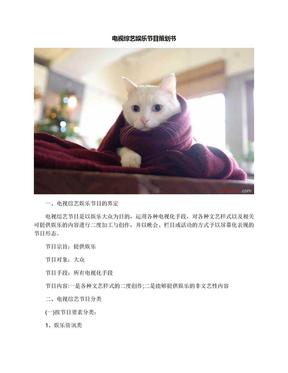 电视综艺娱乐节目策划书.docx