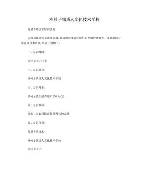 母猪养殖技术培训计划.doc