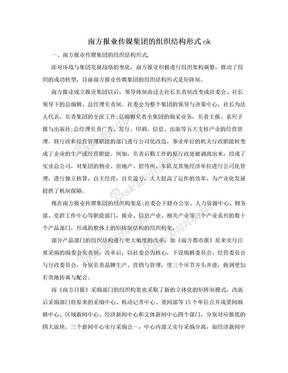 南方报业传媒集团的组织结构形式ok.doc