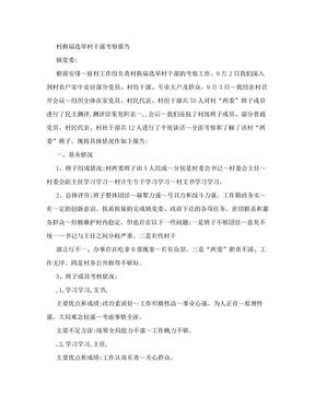 村换届选举村干部考察报告.doc