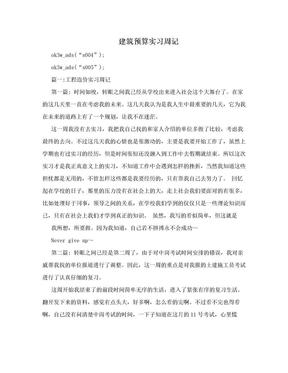建筑预算实习周记.doc