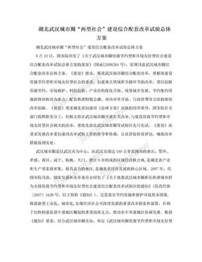 """湖北武汉城市圈""""两型社会""""建设综合配套改革试验总体方案.doc"""